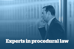 Experts in procedural law